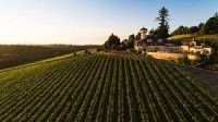 The Chiles Group Winemakers Dinner featuring Willamette Valley Vineyards