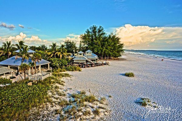 Sarasota Manatee Originals Blog Posts From Top Waterfront